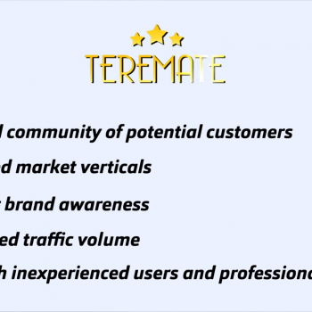 Анимирано explainer промо видео на онлайн рекламна платформа Teremate 8