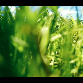 Корпоративно видео за Девин ЕАД 4