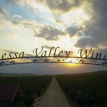 корпоративно видео за bessa valley winery