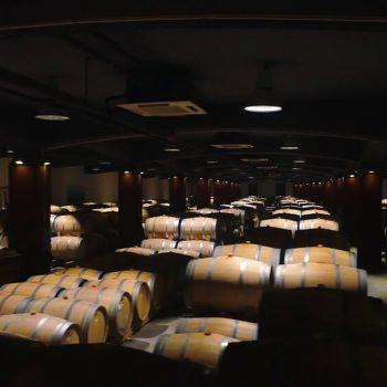 Рекламен филм за винарна Беса Вали (Bessa Valley) 15
