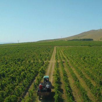 Рекламен филм за винарна Беса Вали (Bessa Valley) 22