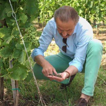 Рекламен филм за винарна Беса Вали (Bessa Valley) 23