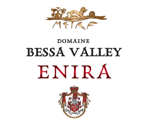 enira bessa valley лого