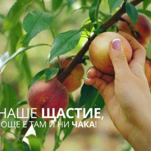 Изработка на видео реклама (бранд видео) за Булгарконсерв 7
