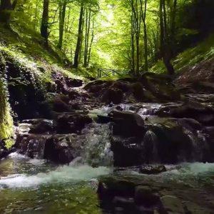 Корпоративно видеозаснемане - 10 години Софийска вода като част от Veolia | Видео 1 25